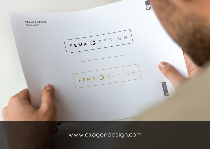 FEMA-Logo-Design-Graphic